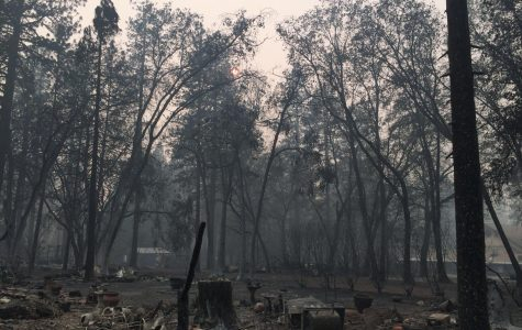 The Camp Fire: A glimpse into California's future