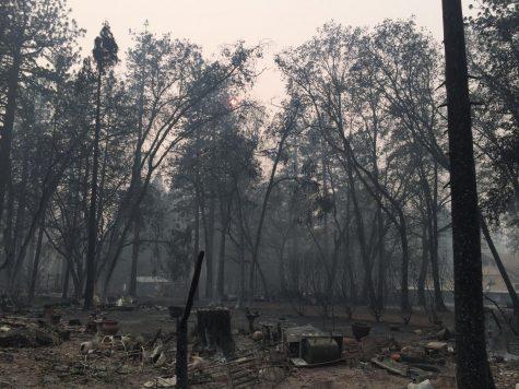 The Camp Fire: A glimpse into California's future