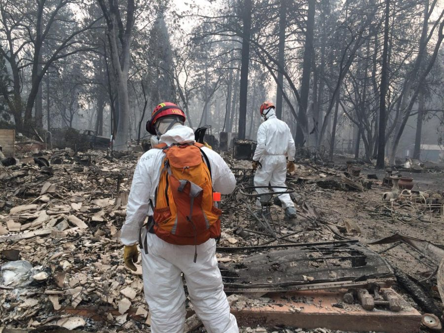 Over 500 Search and Rescue members from across the state of California participated in the largest recorded search efforts following the Camp Fire.