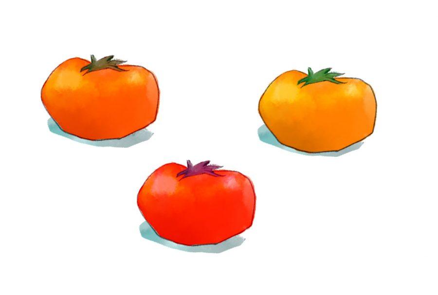 tomatoes salt fat acid heat