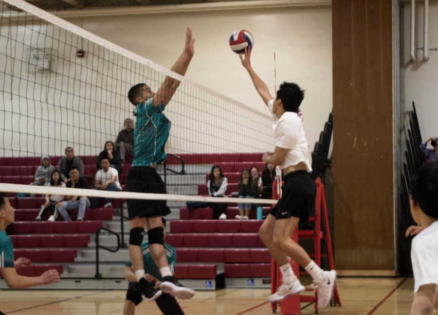 Leaping with agility for a cut shot, sophomore middle blocker Derek Quach attempts to undermine the Burton Pumas.