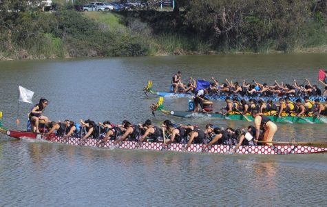 Dragon Boat: More than a club