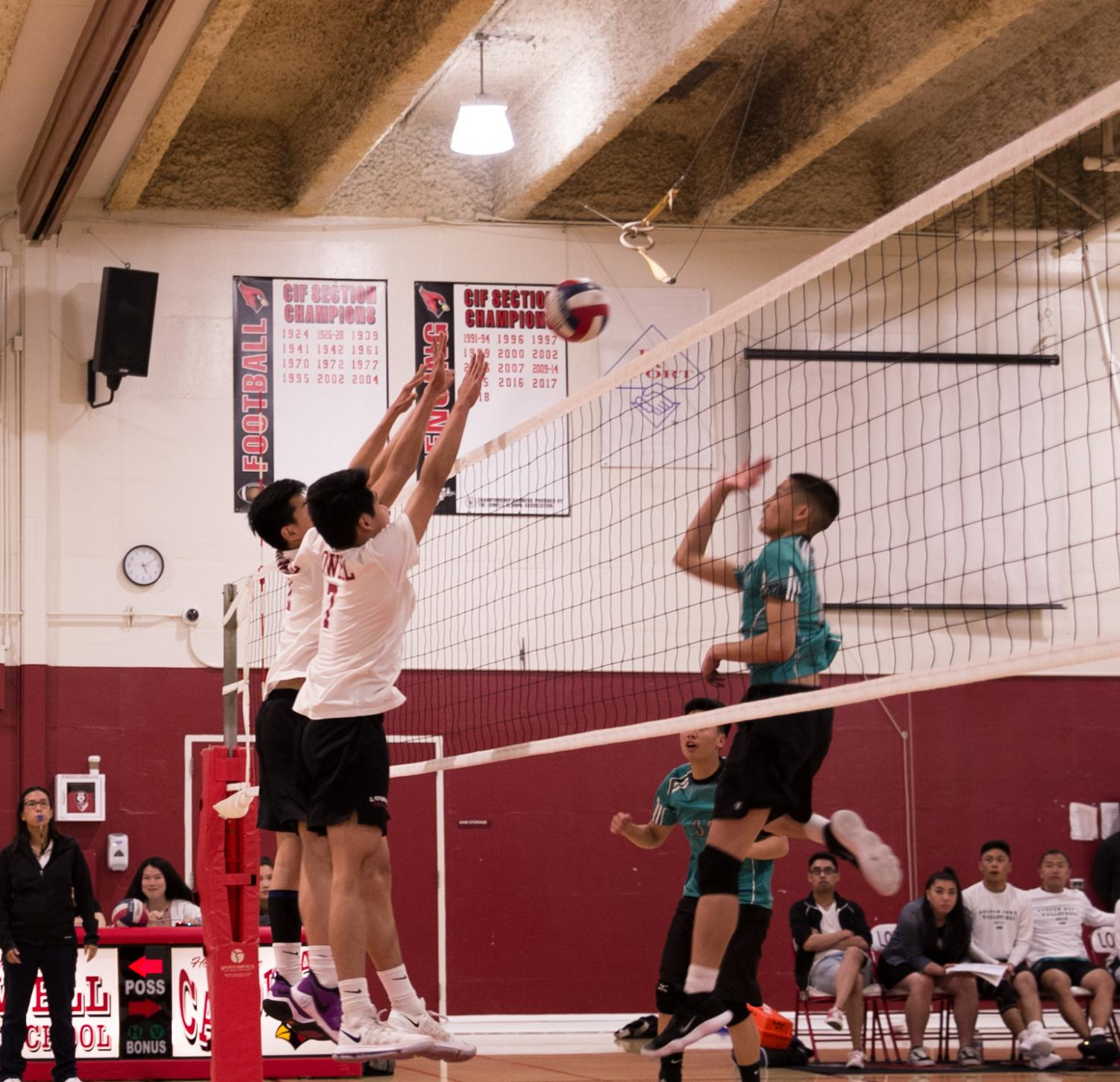 Sophomore outside hitter Brandon Bui and middle blocker Derek Quach work in tandem to knock down the Burton Pumas during the home game on April 24.